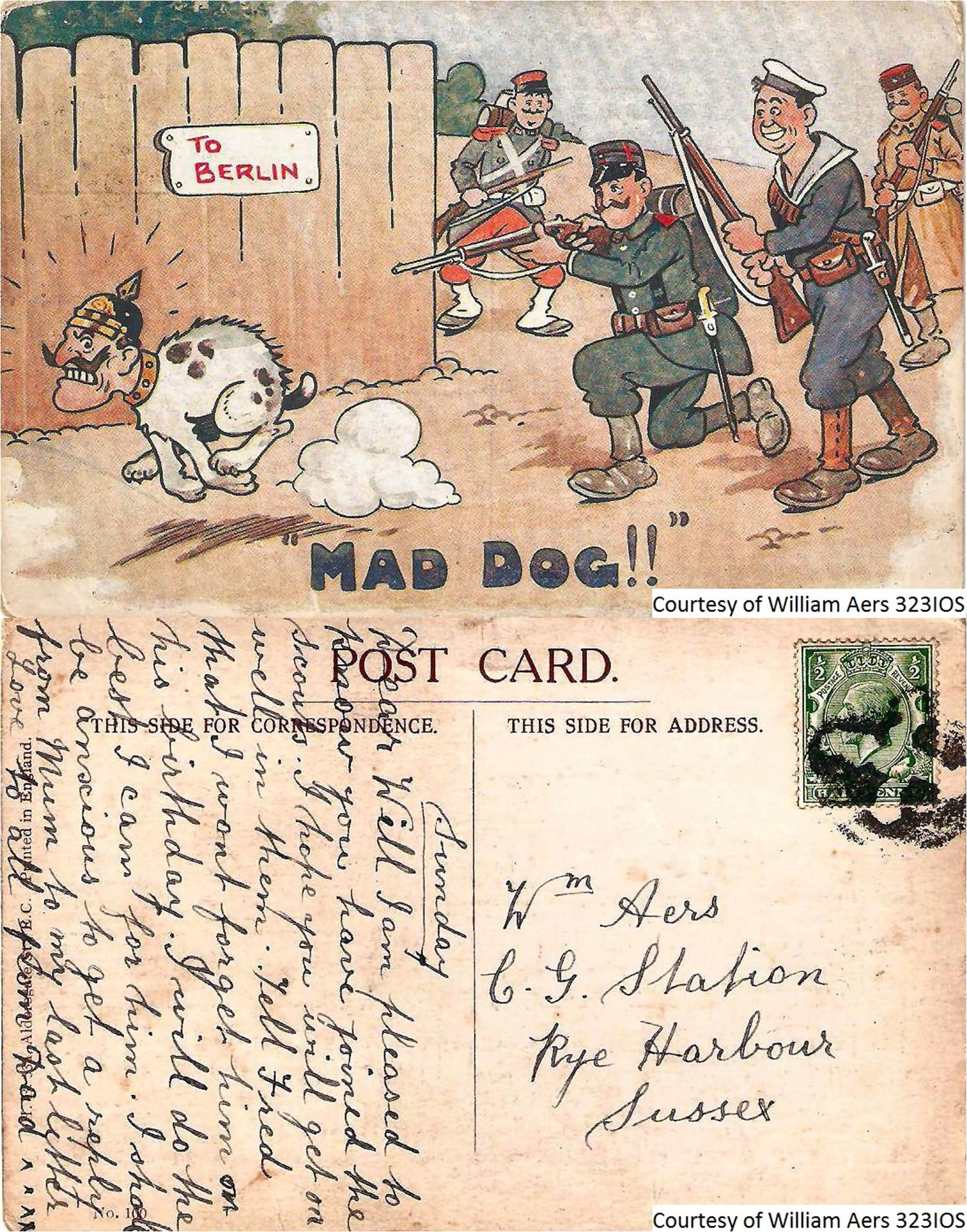 302IOS - William Aers Mad Dog (Postcard) (Front & Back)