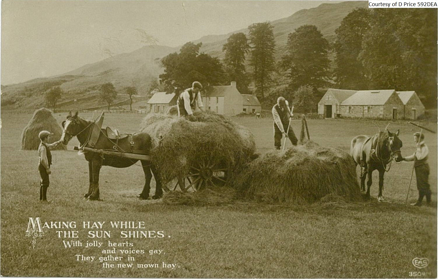 592dea-making-hay-while-the-sun-shines-fornt