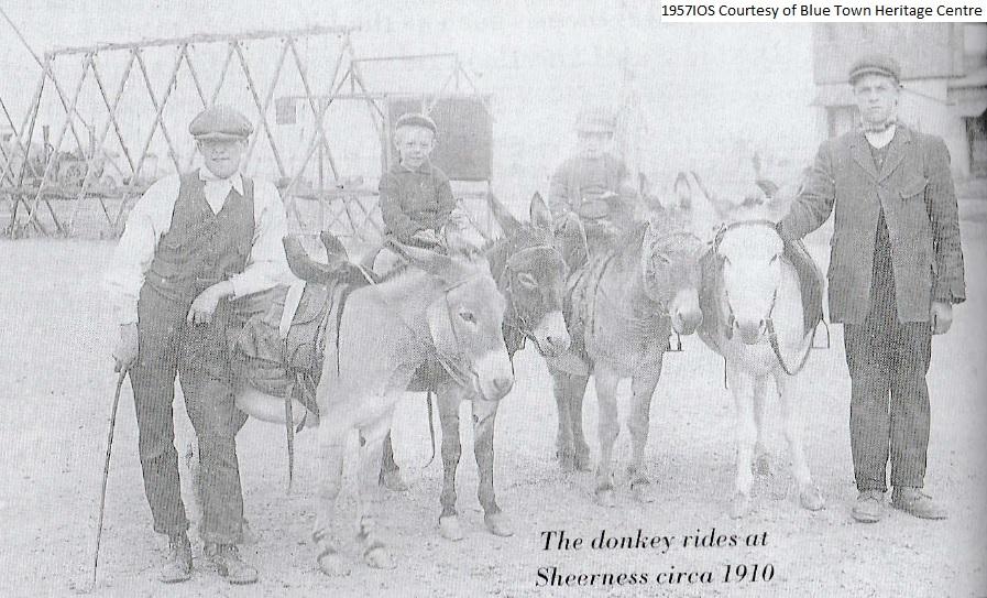 Promenade-Donkey-Rides